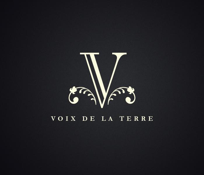vdlt-logo.jpg